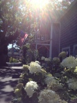 Flag on Martha'sVineyard
